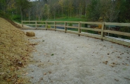 horse fence (2)