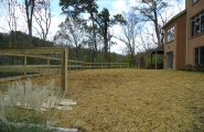 horse fence (3)
