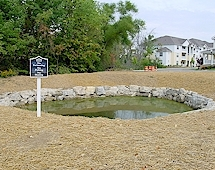 small pond after.jpg