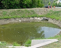 small pond before.jpg